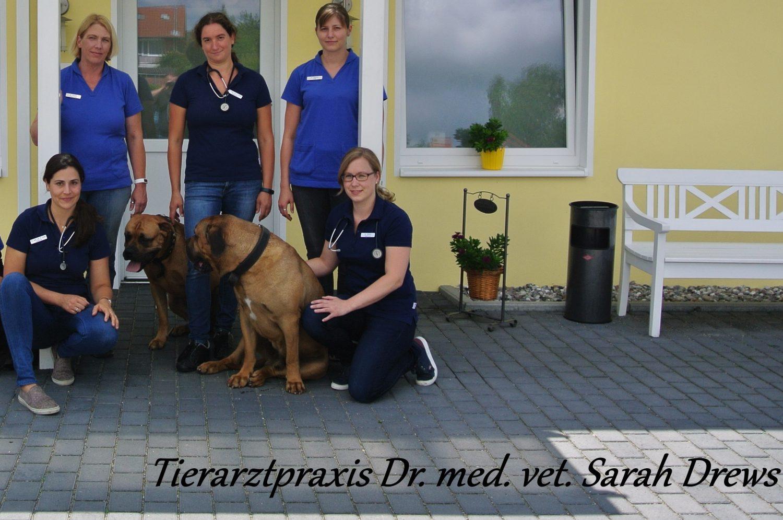 Tierarztpraxis Dr. med. vet. Sarah Drews
